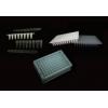 Beebio PCR8联管/单管/96孔板 薄壁